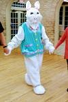 Bunny Hop Party 2019